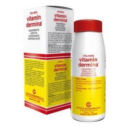 Vitamindermina Polv 100g