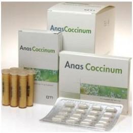 Anas Coccinum H 17 Com 20cps